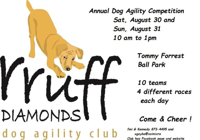Dog Agility Meet Poster first 2014